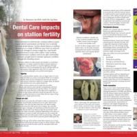 Dental Care Impacts On Stallion Fertility