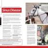 Sinus Disease in Horses